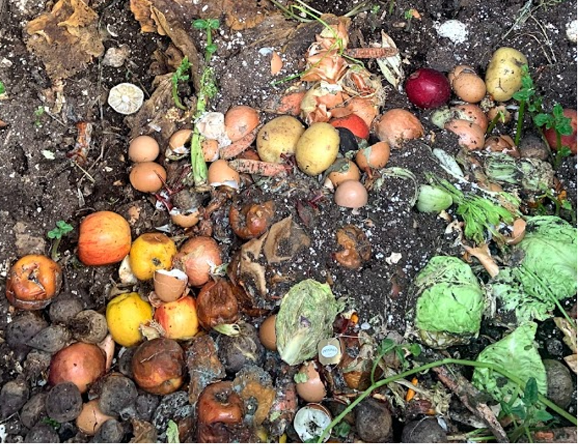 Compost, photo by Chantalle Gervan
